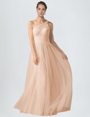 Nude A-Line One Shoulder  Sleeveless Tulle Bridesmaid Dress Toronto